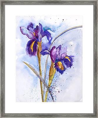 Iris Purple Framed Print