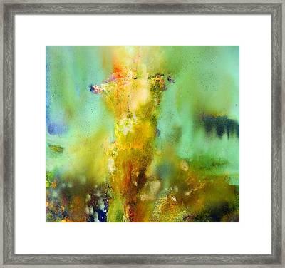 Iris Radiance Framed Print by Petro Bevza