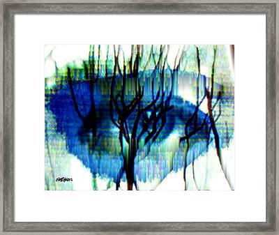 Iris Framed Print by Seth Weaver