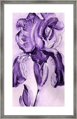 Iris Study In Purple Framed Print