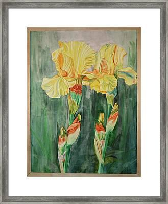 Framed Print featuring the painting Irises II by Teresa Beyer