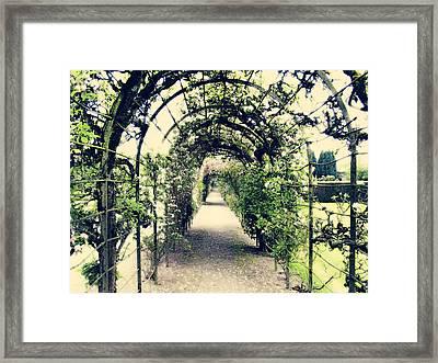Irish Archway Framed Print by Linde Townsend