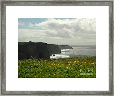 Irish Coast Cliffs Of Moher In Spring Ireland Framed Print by Nature Scapes Fine Art