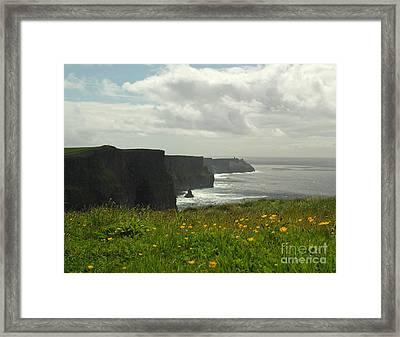 Irish Coast Cliffs Of Moher In Spring Ireland Framed Print