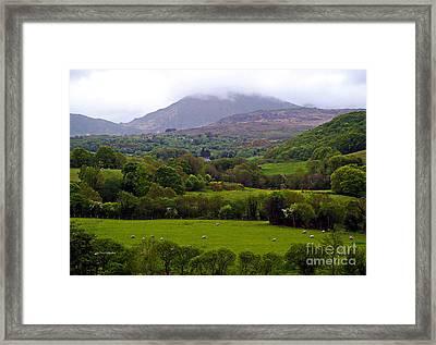 Irish Countryside II Framed Print