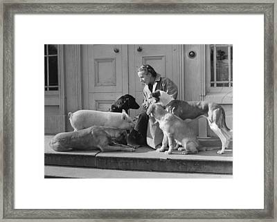 Irish Menagerie Framed Print by Haywood Magee