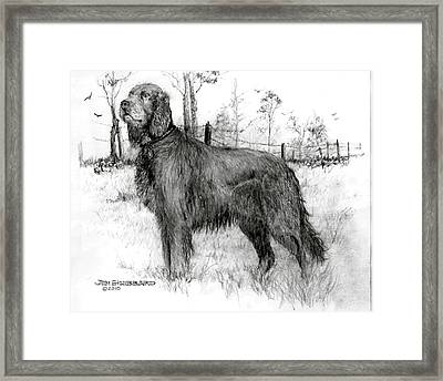 Framed Print featuring the drawing Irish Setter by Jim Hubbard