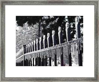 Iron And Ice 1 Framed Print by Elizabeth Sullivan