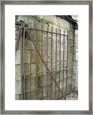 Framed Print featuring the photograph Iron Gate by Christophe Ennis