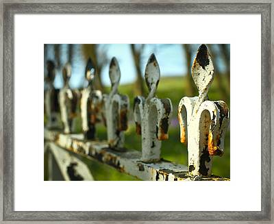 Iron Gate II Framed Print by Jacqui Collett