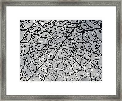 Framed Print featuring the photograph Iron Webbing by Nancy Dole McGuigan