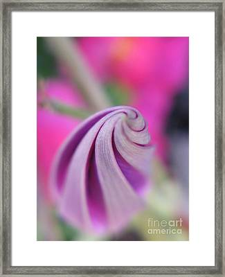 Framed Print featuring the photograph Irresistable Photography by Tina Marie