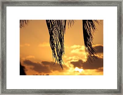 Islamorada Sunset Framed Print by Ty Helbach