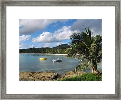 Isle Of Pines Framed Print by Joyce Woodhouse