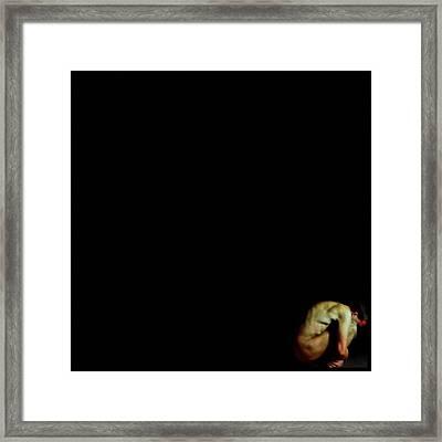 Isolation Framed Print by Gun Legler