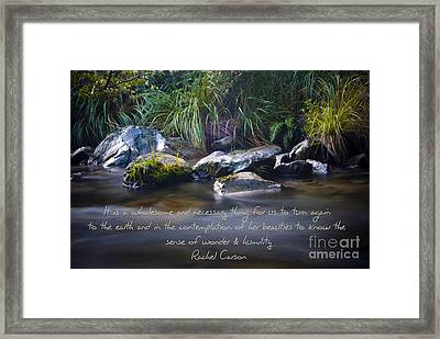 It Is A Wholesome....... Framed Print by Karen Lewis