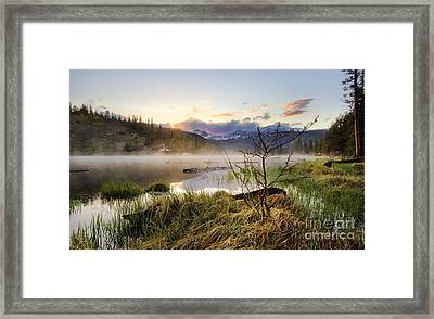 It Rises Framed Print by Tyler Porter