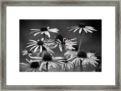 It Takes A Village Framed Print