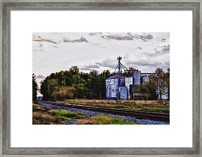 It's Graining Framed Print by Kelly Reber