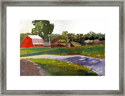 Its Not So Unusual Framed Print