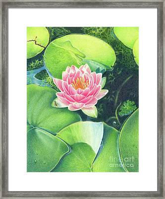 Its Pink Framed Print