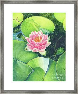 Its Pink Framed Print by Elizabeth Dobbs