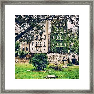 Ivy-covered Dreams - New York City Framed Print