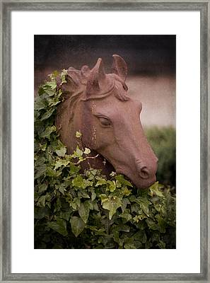 Ivy Covered Horse Head Statue Framed Print by Ethiriel  Photography