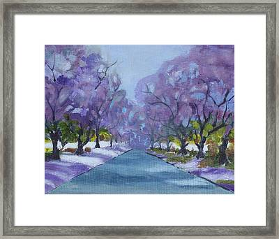 Jacaranda City Framed Print