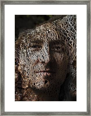 Jack In The Green Framed Print by Christopher Gaston