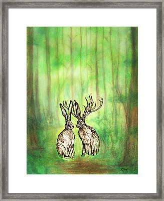 Into The Woods Framed Print by Carrie Jackson