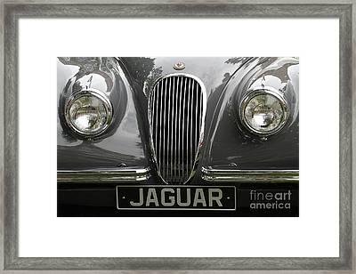 Jaguar Framed Print by Dennis Hedberg