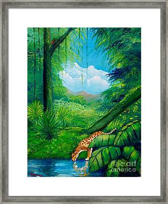 Jaguar Drinking Water Framed Print