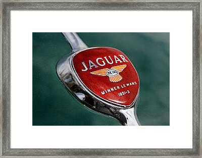 Jaguar Winner Le Mans Framed Print by Kristan Barnes