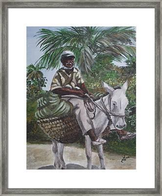 Jamaican Donkey Power Framed Print by Kim Selig