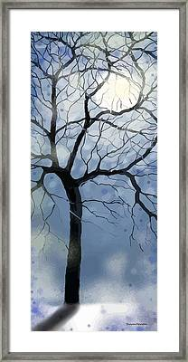 January Night Framed Print by Sharon Marcella Marston