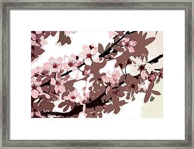 Japanese Blossom  Framed Print by Sarah O Toole