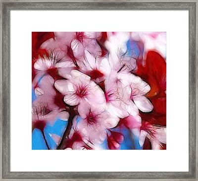 Japanese Flower Framed Print by Steve K