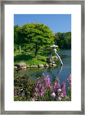 Japanese Garden Framed Print by Cindy Haggerty