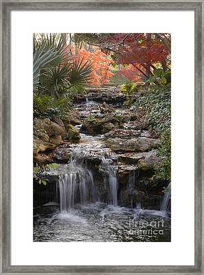 Waterfall In The Japanese Gardens, Ft. Worth, Texas Framed Print