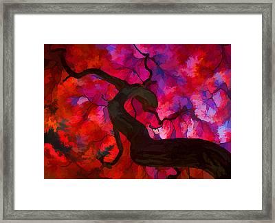 Japanese Maple Branch Framed Print