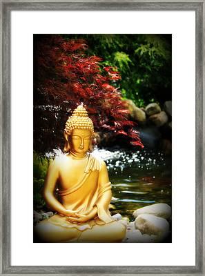 Japanese Maple Zen Framed Print