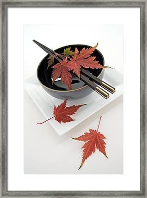 Japanese Noodle Bowl Framed Print by Erika Craddock