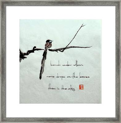 Japanese Paradise Flycatcher 1 Framed Print