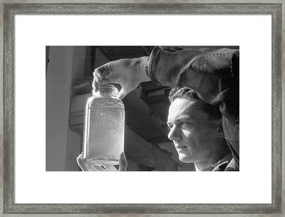 Jar Of Plankton Framed Print by Haywood Magee