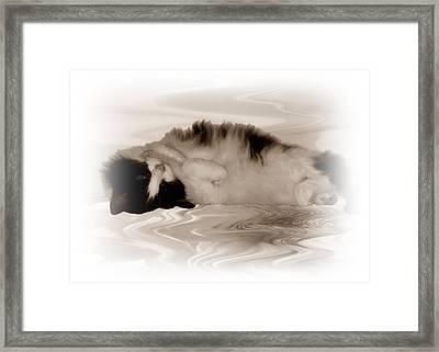 Jasmine Framed Print by Sharon Lisa Clarke