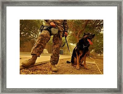 Jaso A Military Working Dog Framed Print