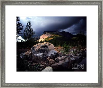Jasper - Summer Storm Framed Print by Terry Elniski