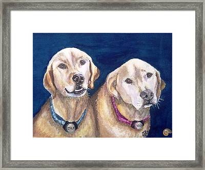 Jax And Nola Framed Print by DJ Laughlin