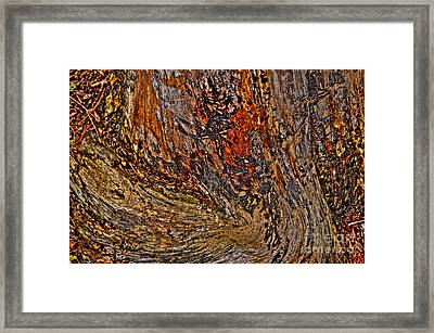 Jazzy Twist Framed Print by Anca Jugarean